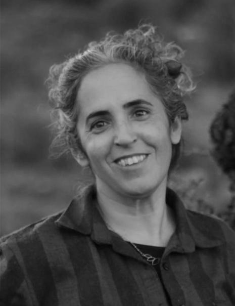 Ayala Noy Meir